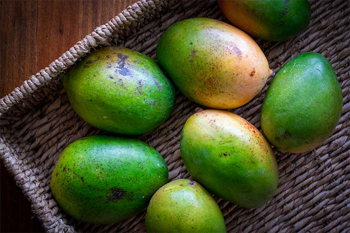 unripened mangos for pickled mango recipe